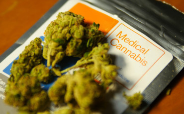 Study Finds Many Medical Edibles Mislabeled Featured Image