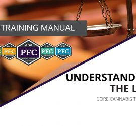 Understanding the Law Website Graphic